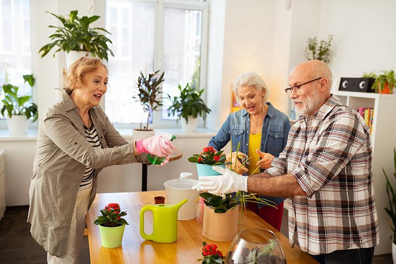 Kolme iäkästä ihmistä istuttaa kukkia keittiössä.