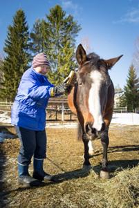 Vanha nainen harjaa hevosta ulkona kevättalvella.