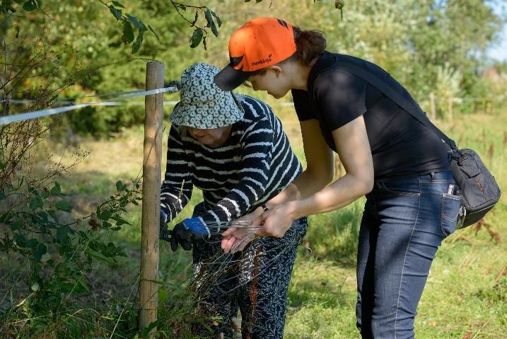 Nuorempi ja vanhempi nainen korjaavat yhdessä aitausta.