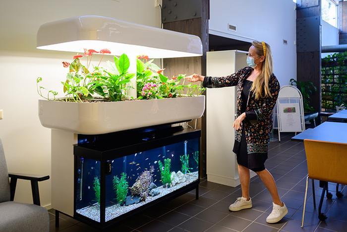 Foibekartanon toimitusjohtaja Ulla Broms esittelee aulassa olevia kasveja ja akvaariota.